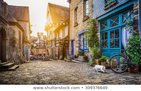 Village street in France Stock photo © Hofmeester