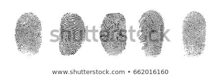 Ujjlenyomat nyomtatott ujj azonosítás vektor elismerés Stock fotó © robuart