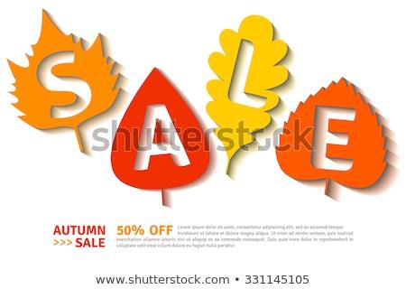 Promóciós címke juhar levelek tölgy lomb Stock fotó © robuart