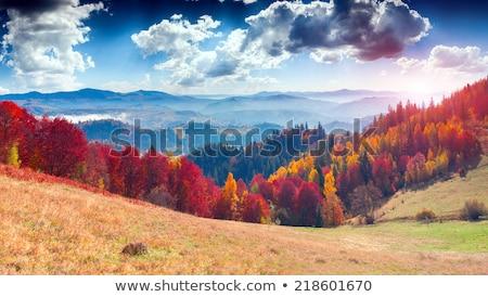 Dağlar köy sonbahar manzara sonbahar arka plan Stok fotoğraf © joyr