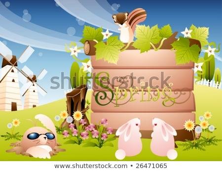 Conejos ardillas signos ilustración naturaleza Foto stock © colematt