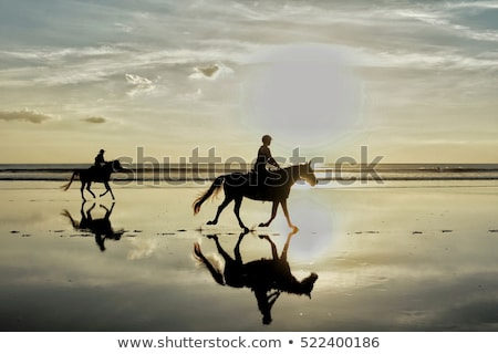 Сток-фото: Silhouette Photo Of Horse Riding In The Evening Sunset Time Dramatic Style