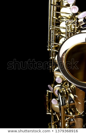 Girl with saxophone leaning Stock photo © lichtmeister