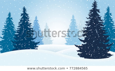 Vector christmas pijnboom geïsoleerd witte gelukkig Stockfoto © dashadima