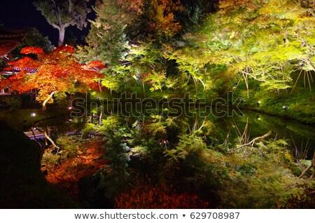 Kyoto nuit temple japonais Japon Photo stock © jeayesy