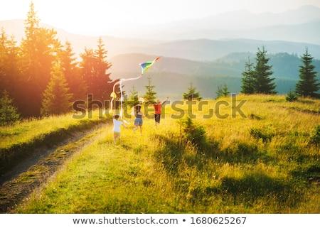 meisje · vlinder · zonsondergang · berg · klein · kaukasisch - stockfoto © wildman