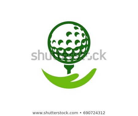стороны мяч для гольфа гольф зеленый флаг Сток-фото © jamdesign
