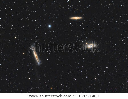 Leo Triplet Stock photo © rwittich