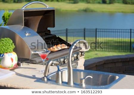 grillezett · kebab · paradicsomok · étel · háttér · zöld - stock fotó © ozgur
