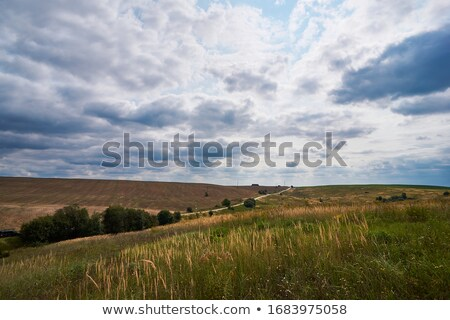Deserted arable land Stock photo © stevanovicigor