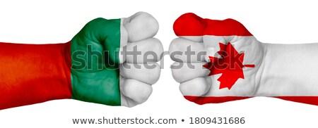 Punho pintado cores Bulgária bandeira baixo Foto stock © vepar5