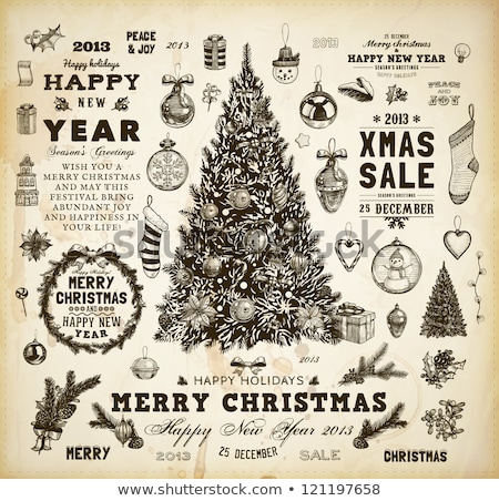 vector vintage holiday floral  design elements  and snowflakes Stock photo © alexmakarova