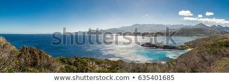the citadel of Calvi with maquis and snow capped mountains Stock photo © Joningall