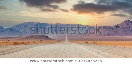ストックフォト: 風景 · ナミビア · 砂 · 道路 · 砂漠 · ツリー