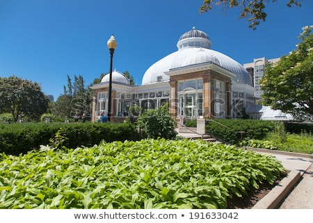 Stock photo: Plants in a greenhouse, Allan Gardens, Toronto, Ontario, Canada