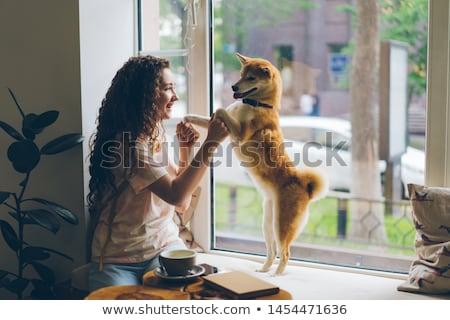 cute · танцы · собака · счастливым · животного · танцовщицы - Сток-фото © willeecole