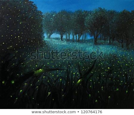 Holdfény illusztráció absztrakt természet fény üveg Stock fotó © adrenalina