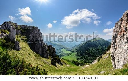 Eslováquia verde viajar montanhas paisagens ao ar livre Foto stock © phbcz