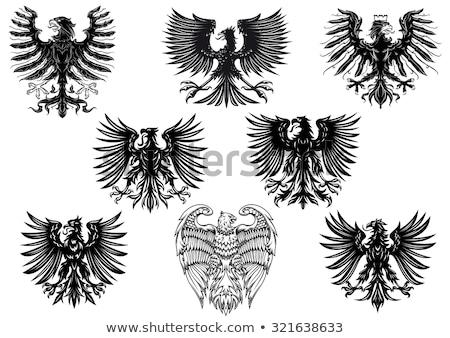 black heraldic eagle stock photo © genestro