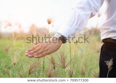 Stock fotó: üzletember · legelő · hát · üres · üzlet · természet