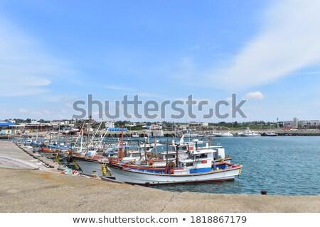 Village on seashore. Stock photo © Leonardi