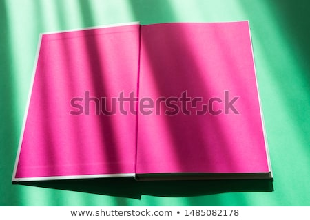 Blue school textbook and bookend Stock photo © devon