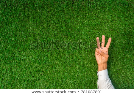 Three Blank Signs In Fist Stock photo © feverpitch