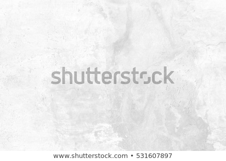 Building painted in white Stock photo © bluering