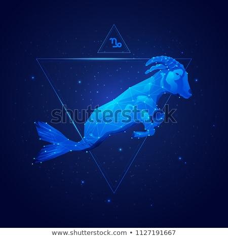 állatöv · horoszkóp · felirat · kör · tenger · kecske - stock fotó © olena