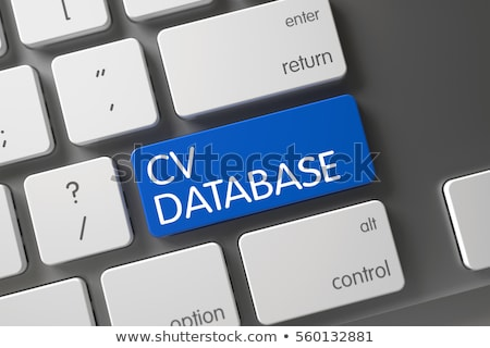 CV Database - Keyboard Key Concept. 3D Stock photo © tashatuvango