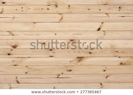 detailed spruce plank  Stock photo © taviphoto