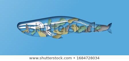 Blu Ocean origami isolato bianco sfondo Foto d'archivio © brulove