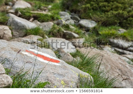 Hiking route markings in a national park Stock photo © Mps197
