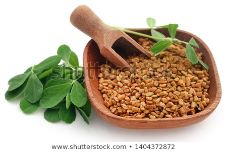 Fenugreek seeds and oil Stock photo © bdspn