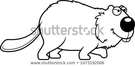 Karikatür kunduz örnek hayvan gülen Stok fotoğraf © cthoman