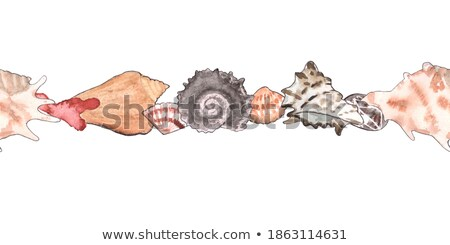 Underwater Coral Isolated on White Backdrop Stone Stock photo © robuart