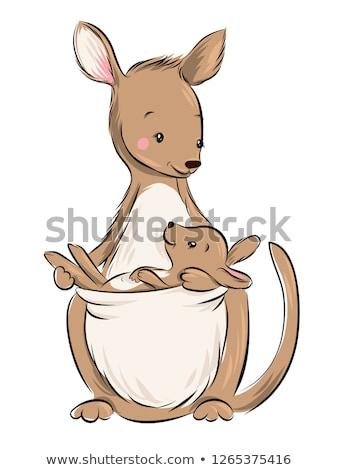 Boldog rajz kenguru illusztráció néz Stock fotó © cthoman