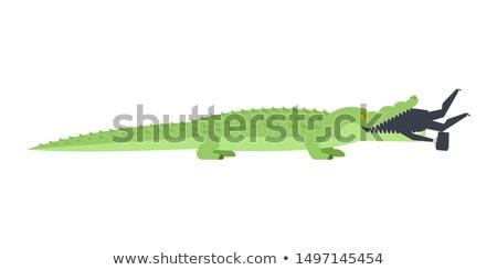 Krokodil işadamı timsah açmak ağız patron Stok fotoğraf © MaryValery