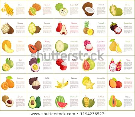 Citron and Bael Papaya Melon Posters Set Vector Stock photo © robuart