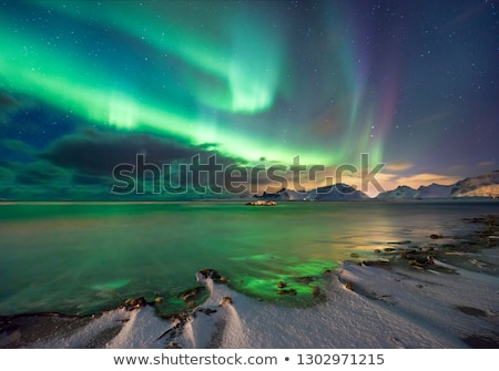 real magic of northern lights   norwegian fjord with snow and mo stock photo © taiga