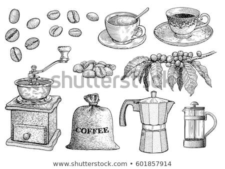 schets · beker · koffie · schuim · stijl · kunst - stockfoto © Arkadivna