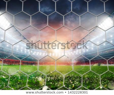 futball · büntetés · rúgás · háttér · mező · zöld - stock fotó © alphaspirit