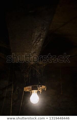 мрачный комнату пресмыкающийся Scary сцена Сток-фото © Kotenko