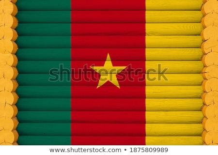 Casa bandeira Camarões branco casas Foto stock © MikhailMishchenko