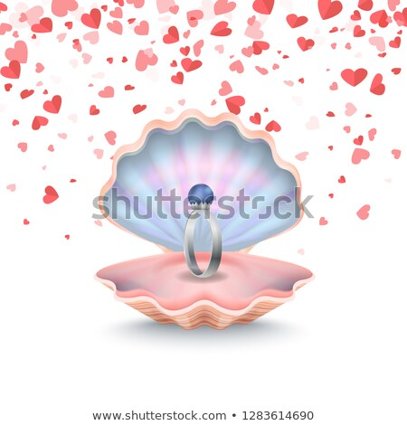 Wedding Ring in Conch, Marriage Postcard Vector Stock photo © robuart