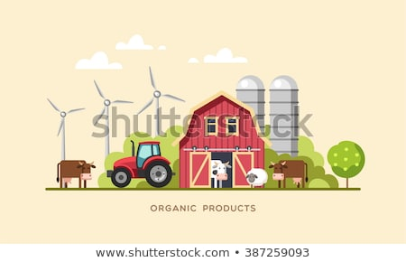 cows in the farm scene concept for nature country and healthy life and food organic food flat ve stock photo © makyzz