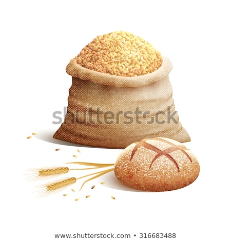 Color Designed Agriculture Grain Wheat Ripe Spike Vector Stock photo © pikepicture