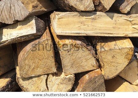 Close up of tree trunk stack. Stock photo © lichtmeister