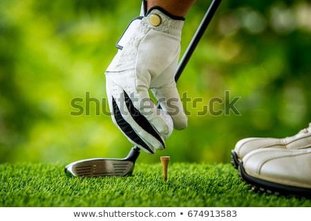 Сток-фото: девушки · мяч · для · гольфа · трава