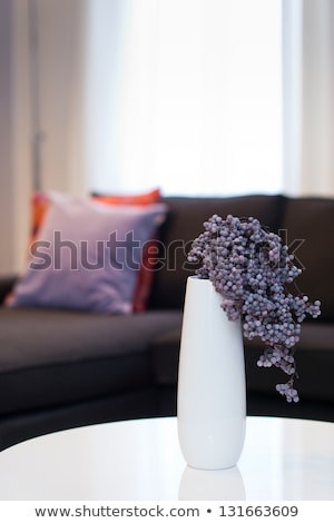 Salon détail design élégant luxe meubles Photo stock © amok